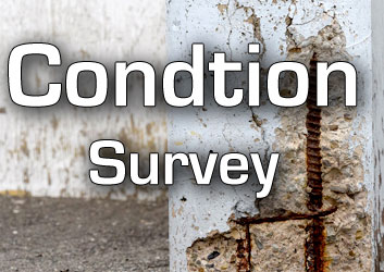 Condtion Survey